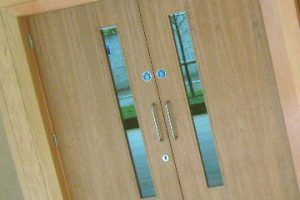 Veneer facing fire door